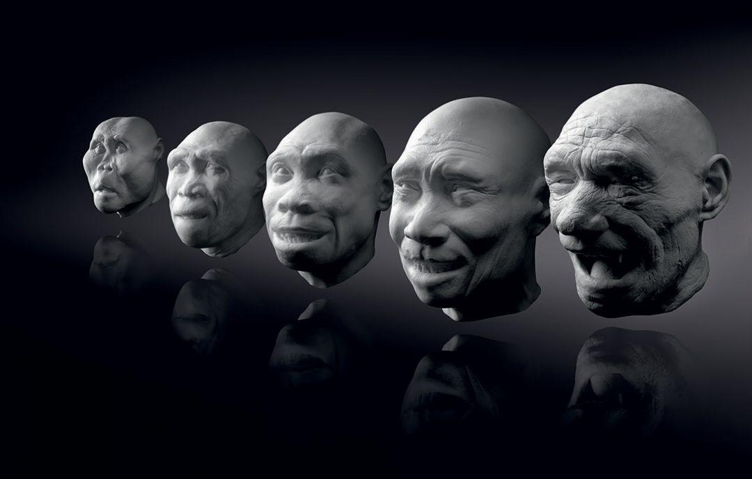 Affe-Mensch