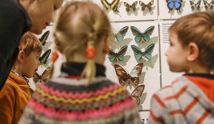Kinder vor Schmetterlingen II