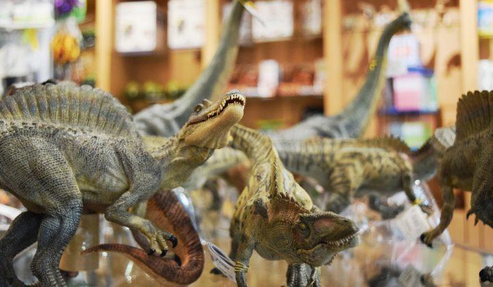Dinosaurier im Museumsshop