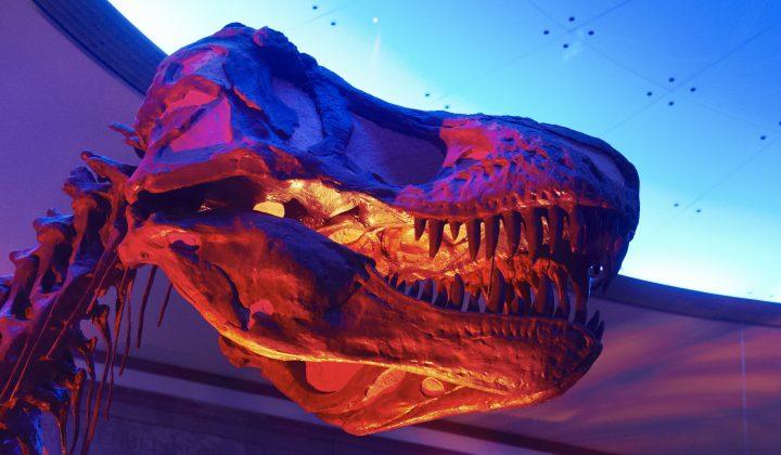 T_Rex Event