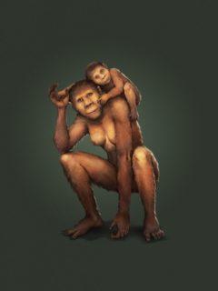 PM Australopithecus 15.07.2019