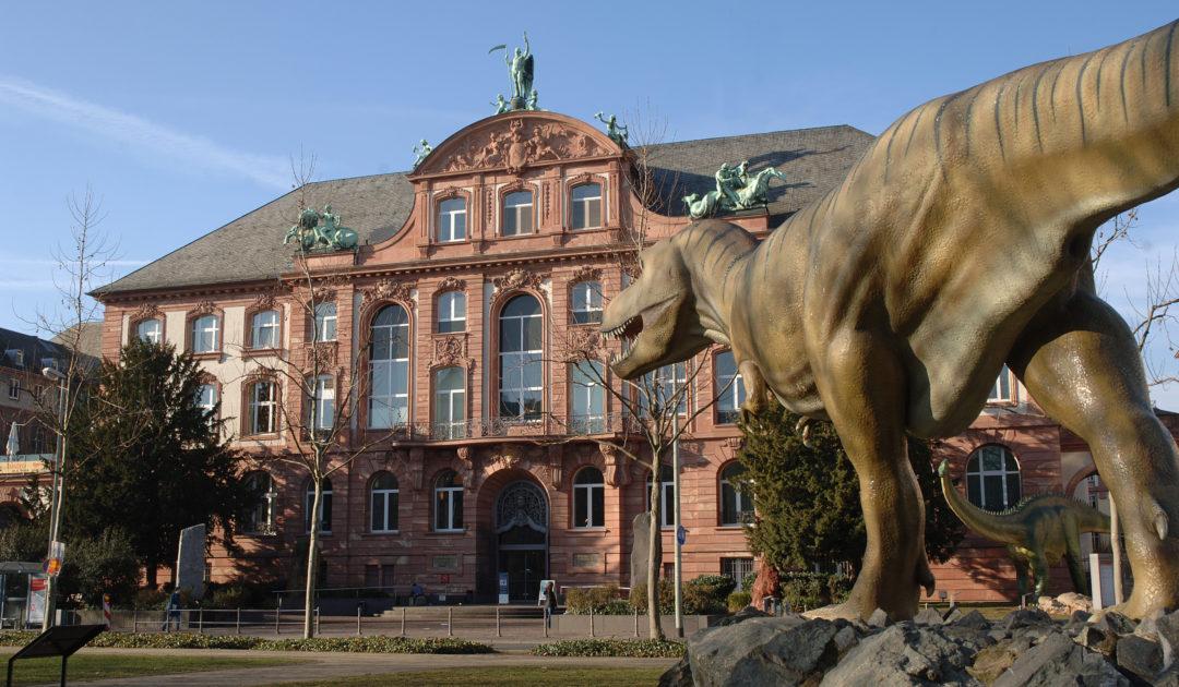 Senckenberg Museum Kindergeburtstag
