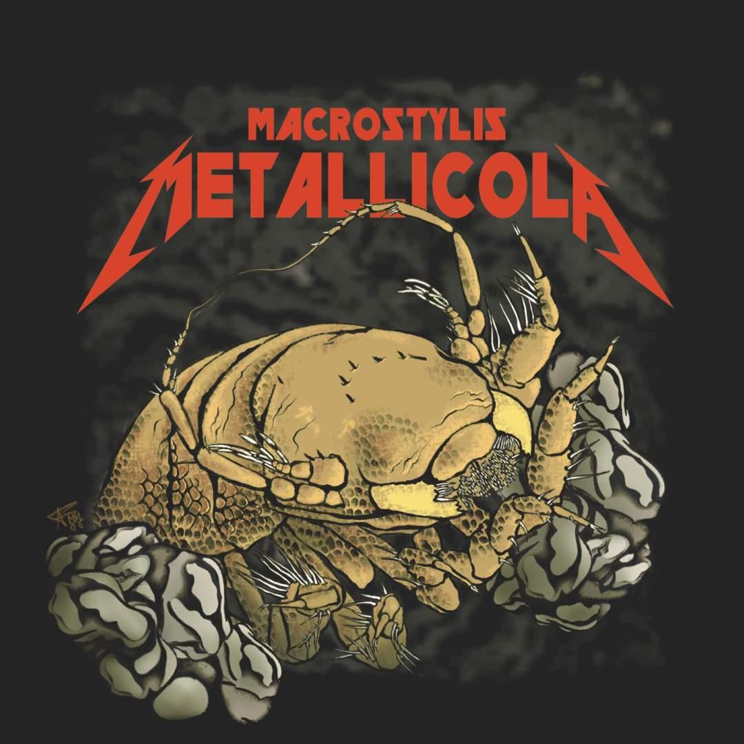 Pm Metallica 27.02.2020 Logo