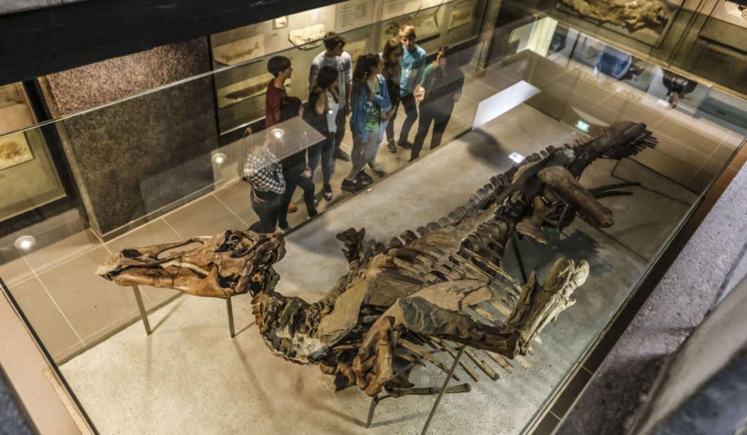 Edmontosaurus mit Gruppe