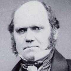 Charles Darwin im Alter von 45 Jahren